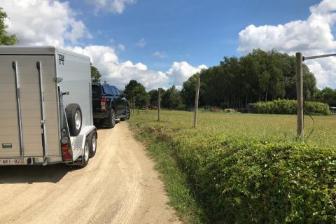 transport paardencrematorium